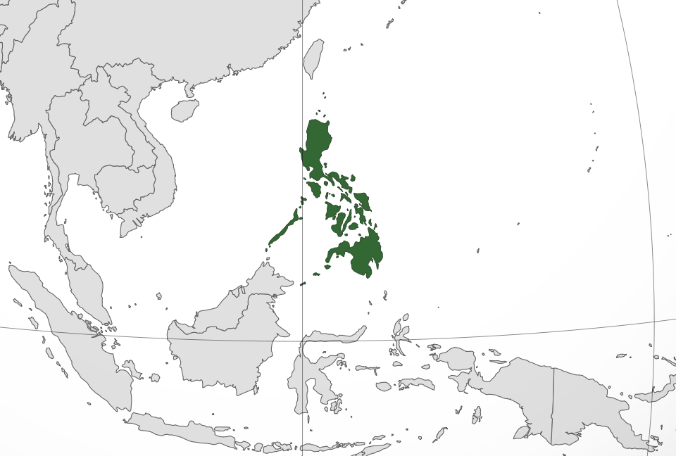 Philippines location - Crucial Facts for Foreign Entrepreneurs Eyeing the Philippines